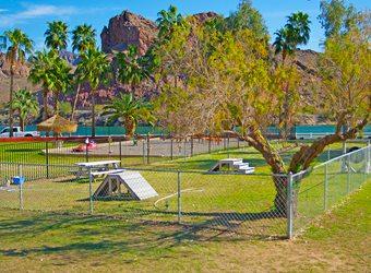Echo Lodge Resort Dog Park